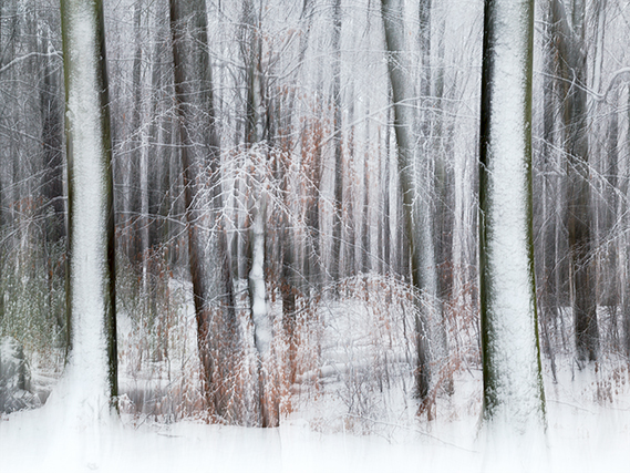 2015_11_22_0077174-Wintertime-blogg
